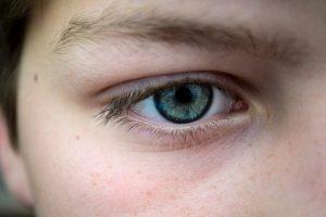 Auge close-up