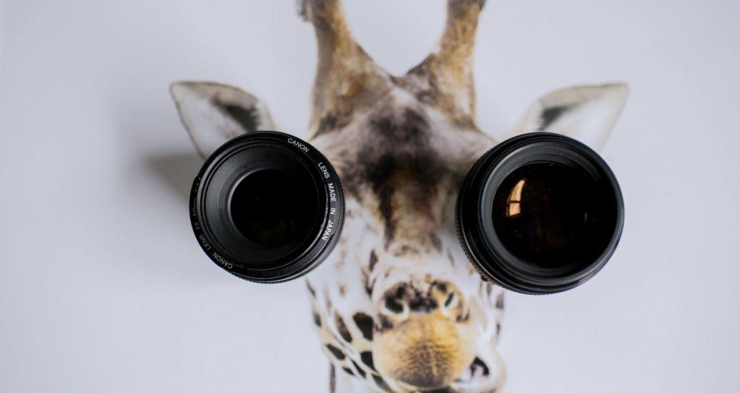 Kontaktlinsen aufsetzen